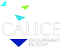 Logo Groupe Calice